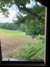 VIEW FROM THE BLIND.jpg